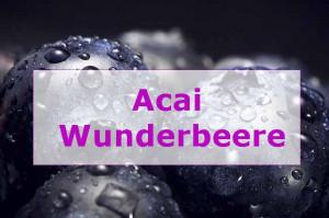 Acai Berry Extreme was steckt in den Wunderbeeren ? schnell Abnehmen ganz einfach?