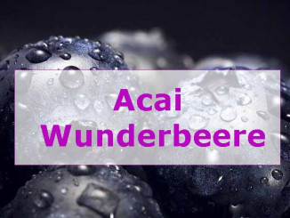 Acai Berry Extreme was steckt in den Wunderbeeren ?