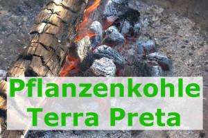 schwarze Wunderkohle für den Garten Terra-Preta