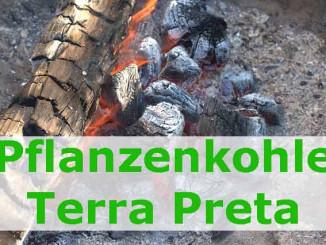 Terra-Preta-schwarze Wunderkohle für den Garten